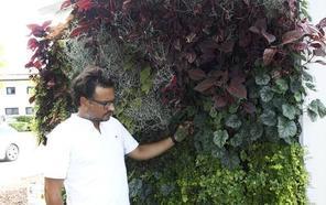 El Serca embellecerá la ciudad con jardines verticales a partir de la próxima primavera