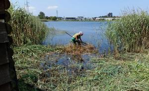 Continúan los trabajos de mantenimiento en la Red EcoAstillero XXI de Espacios Naturales Municipales