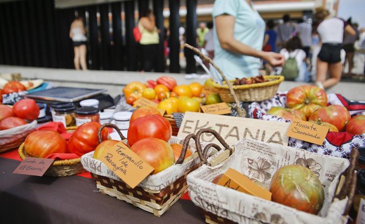 Una vuelta por la Feria del Tomate de Bezana