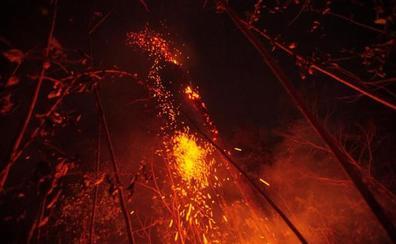 Dieciocho millones de euros para combatir los incendios de la Amazonía