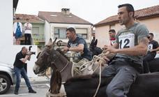 La Audiencia no ve delito por maltrato animal en la carrera de burros de Tanos