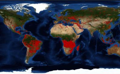 El corazón de África está en llamas, pero el verdadero problema es la sequía