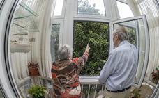 Invadidos por los magnolios
