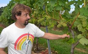 «El cambio climático es real y a los vinos de Cantabria les favorece»