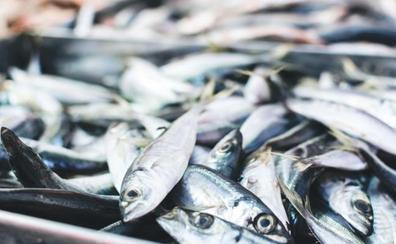 Descubre por qué la dieta escandinava está de moda