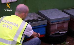 La Guardia Civil auxilia a un vecino de Reinosa atacado por abejas