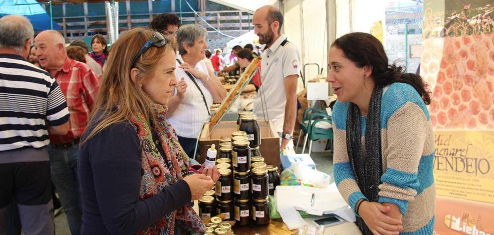Vega de Liébana celebra este sábado la IX Feria de la Miel