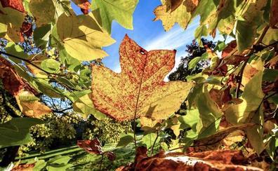 Cantabria tendrá un otoño más cálido de lo normal