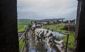 La encrucijada del sector primario en Cantabria