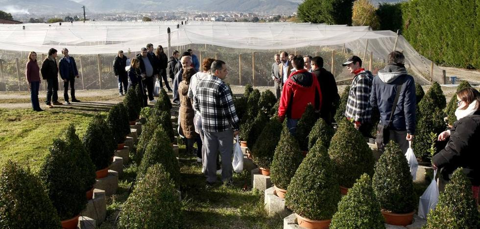 Más de 6.000 escolares participan este curso en el Aula de Educación Ambiental