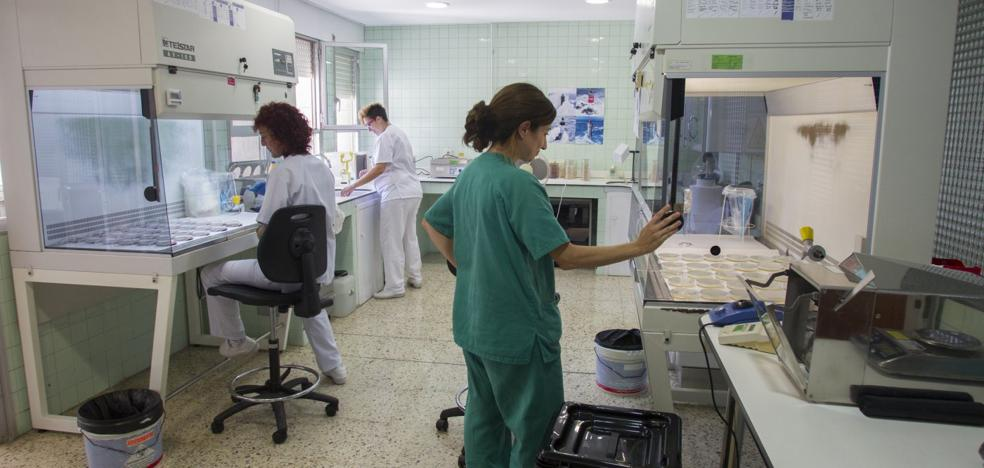 El laboratorio del diagnóstico ganadero