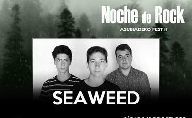 Mind Driller, Reality Check, Duro, Helevorn y los locales Seaweed actuarán en el Asubiadero Fest