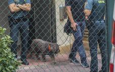 La Guardia Civil recurre al olfato de Marley en busca de pruebas