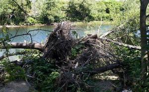 El Gobierno afirma que el Estado aprobará en «tres semanas» las ayudas por inundaciones