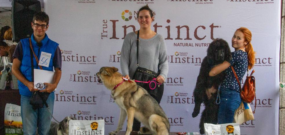 El estilazo canino conquistó la pasarela de El Corte Inglés