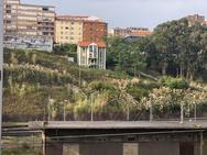La zona de arbustos próxima a la Peña del Cuervo donde ha aparecido el cuerpo de la mujer