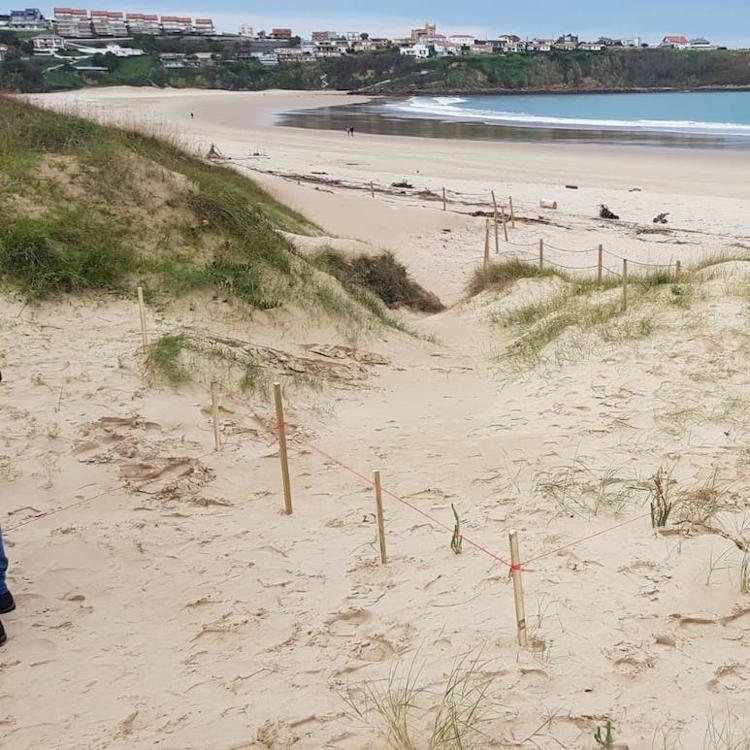 Suances construirá dos nuevos miradores en las dunas de la playa de La Concha