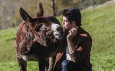 La película 'Dos vacas y una burra' comienza a rodarse en Cantabria