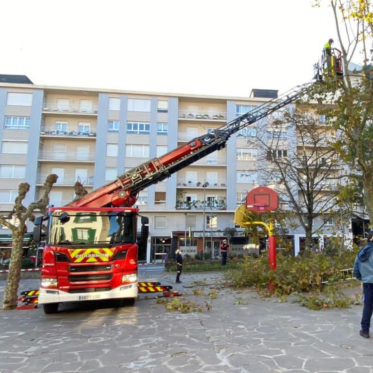 El Ayuntamiento de Castro realiza labores de poda en altura en los árboles de La Barrera y Los Jardines