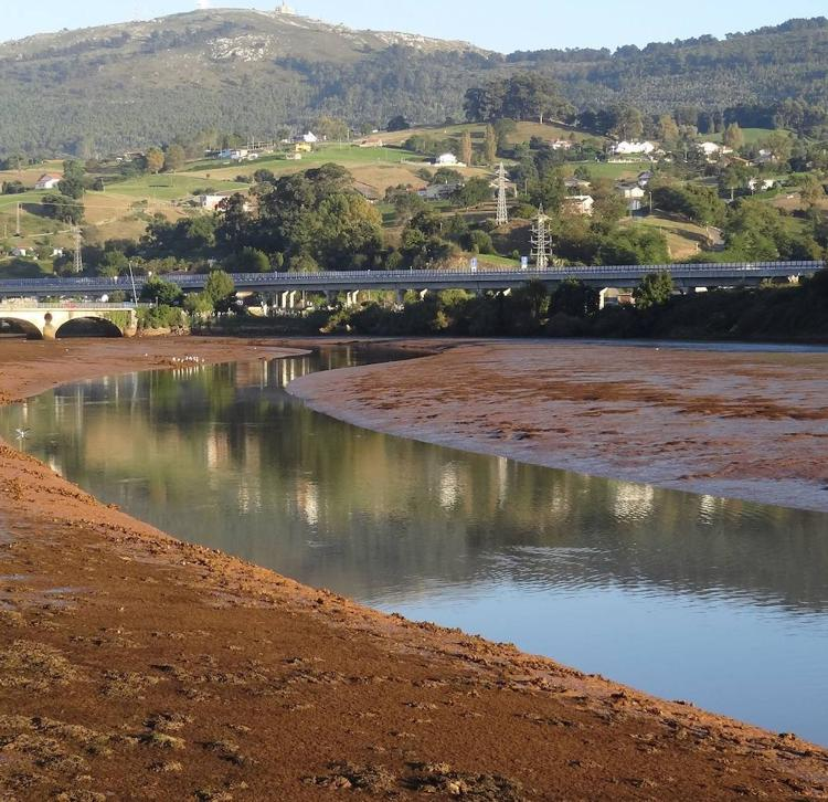 Podemos denuncia la restauración ambiental de Morero y anuncia medidas legales