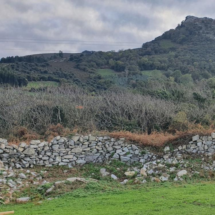 Viniendo de Santander (II)