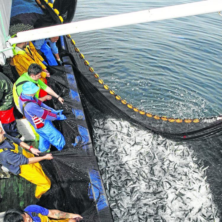 Cantabria ofrece seguridad jurídica al sector pesquero con la nueva ley