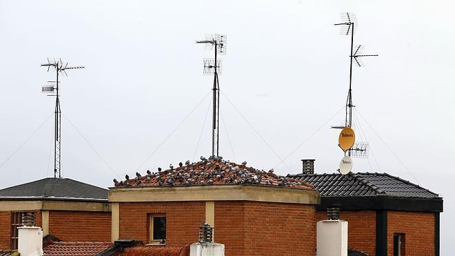 El Gobierno amplía hasta marzo el plazo para reantenizar los edificios