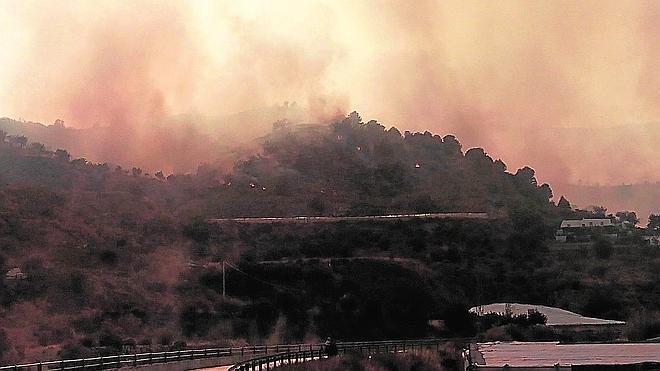 Casi 4.500 hectáreas calcinadas en los incendios de Castellón, Granada y Jaén