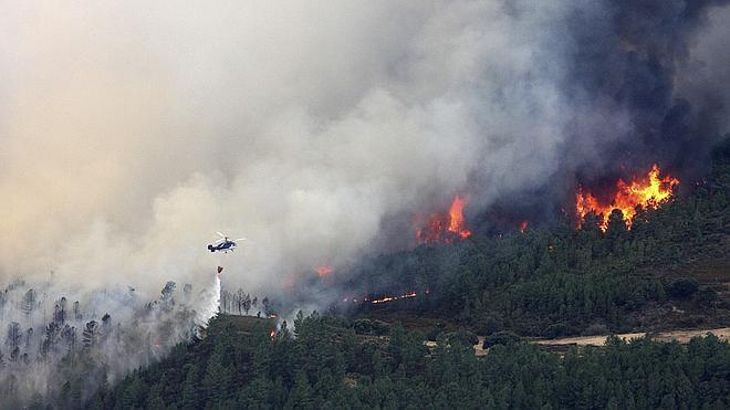 El incendio de la Sierra de Gata lleva quemadas ya más de 5.000 hectáreas