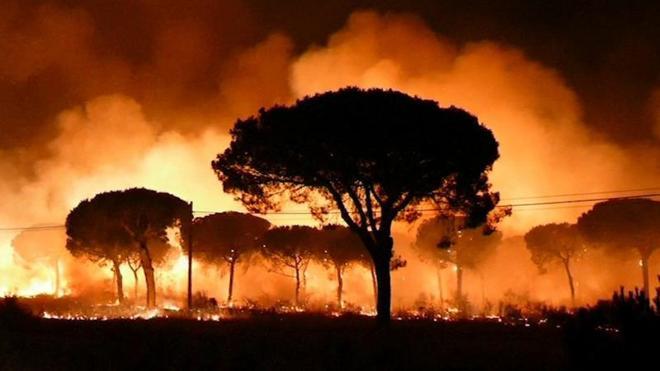 Varias carreteras cortadas y más de 2.000 desalojados por el incendio que acecha a Doñana
