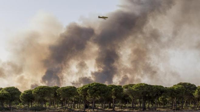 Tres focos continúan activos en el incendio de Doñana