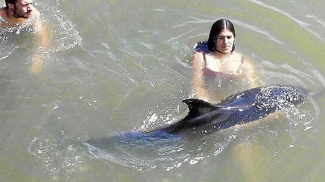 «¡Al principio pensamos que era un tiburón!»