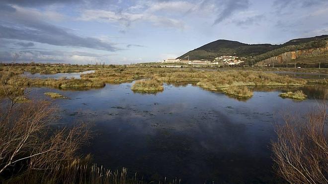 El Gobierno aprueba el proyecto de saneamiento de las Marismas de Santoña