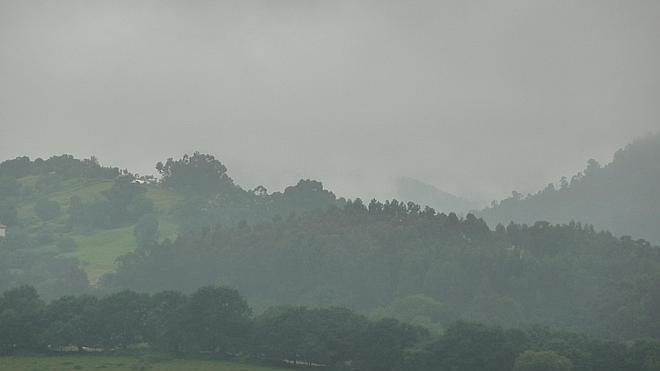 La batida de Rasines, suspendida por la densa niebla