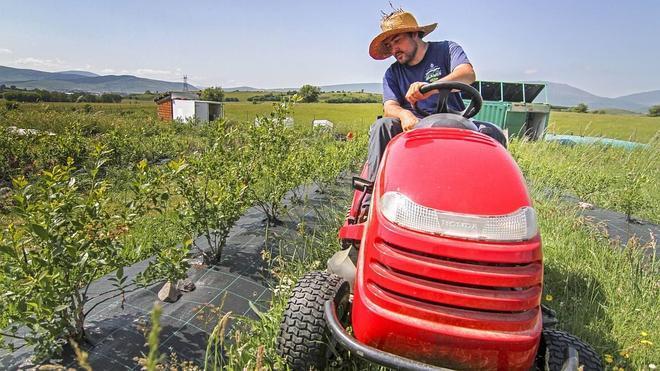 El Gobierno convoca 6,6 millones en ayudas para jóvenes agricultores