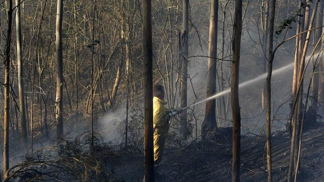 Ningún incendio permanece activo en Torrelavega