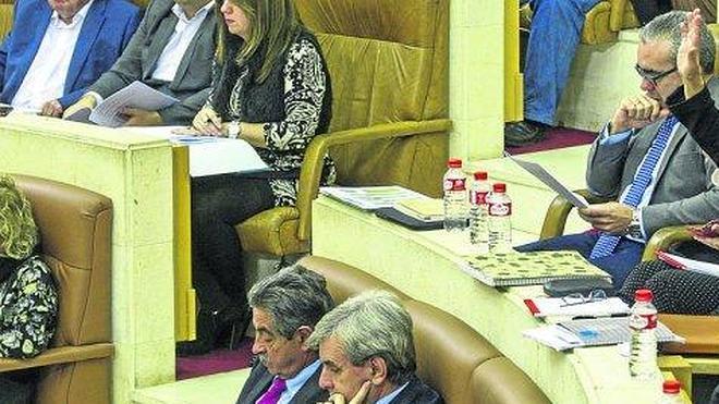 El futuro de Sniace centra el arranque de la actividad parlamentaria