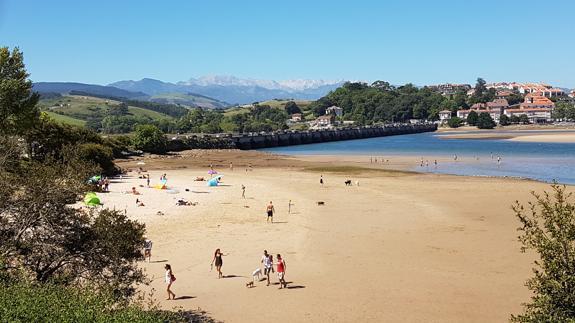 Una Playa Para Disfrutar Con Los Perros El Diario Montañes