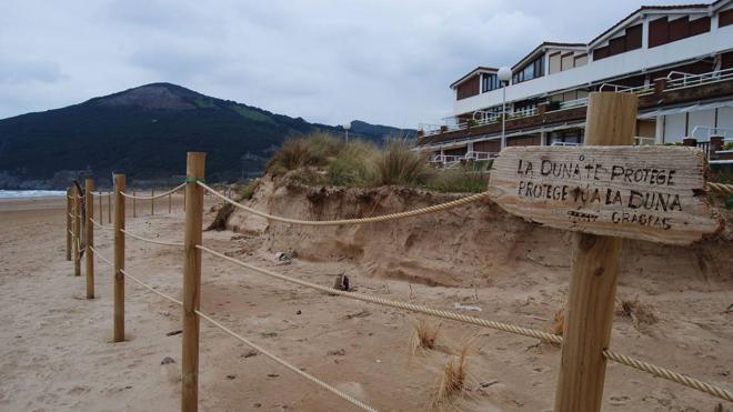 Cantabria refuerza la conservación de las dunas de Berria