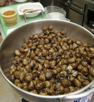 El caracol tiene mucho colesterol